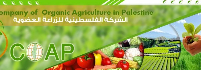 Company of Organic Agriculture in Palestine